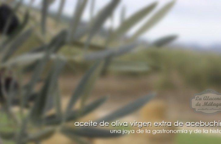 El Aceite de Acebuche en Molino de Monda