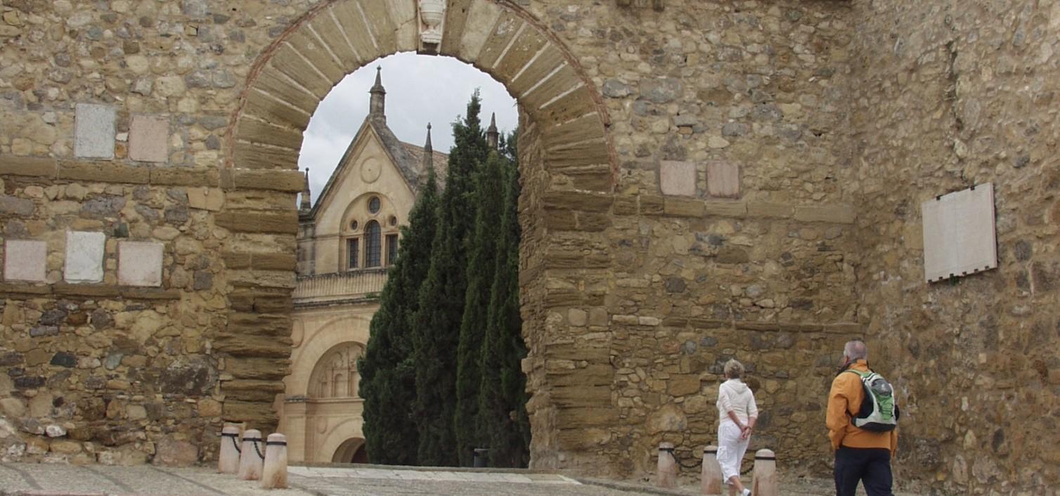 Arco del Gigante y Real Colegiata