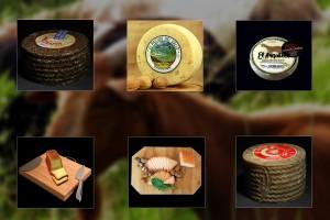 bodegon quesos blog