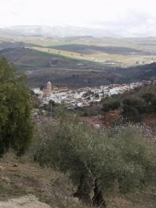 Vista de Casabermeja desde un olivar.
