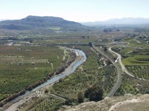 Cítricos junto al río Guadalhorce.