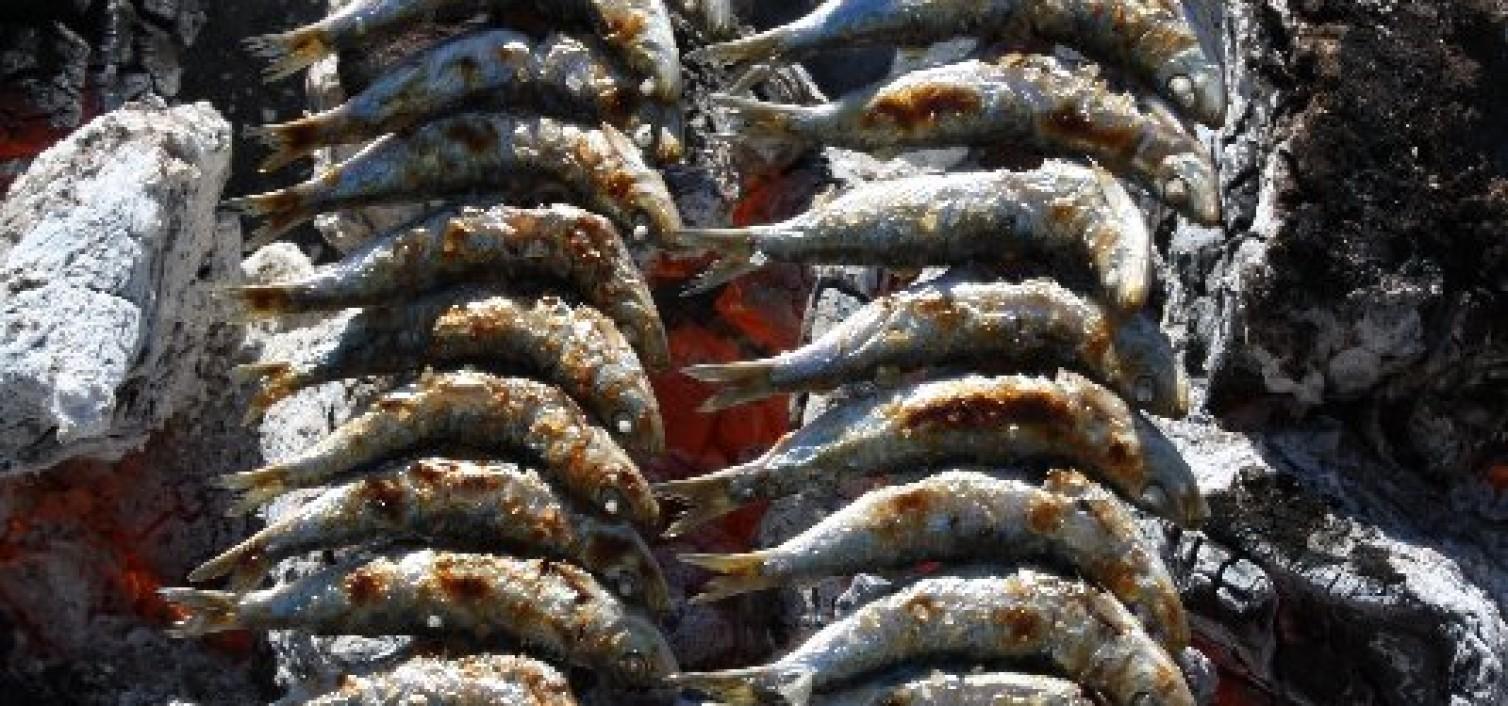 Espetos de sardinas.