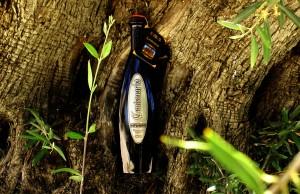 Aceite de Oliva Virgen Extra Centenario - Molino del Hortelano