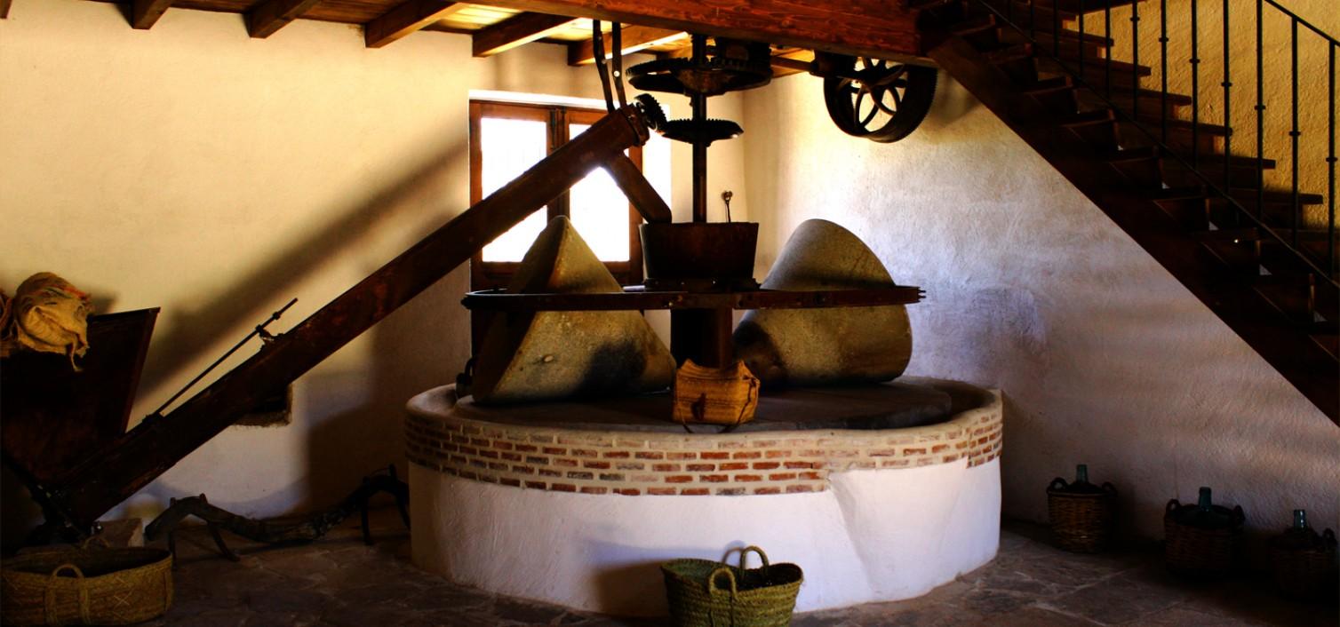 Visita a la almazara Molino del Hortelano