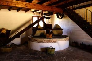 AOVE elaborado con aceitunas de olivos milenarios de Casabermeja.