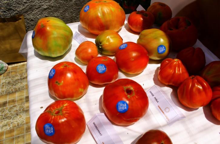 Mercado del tomate huevo de toro en Coín