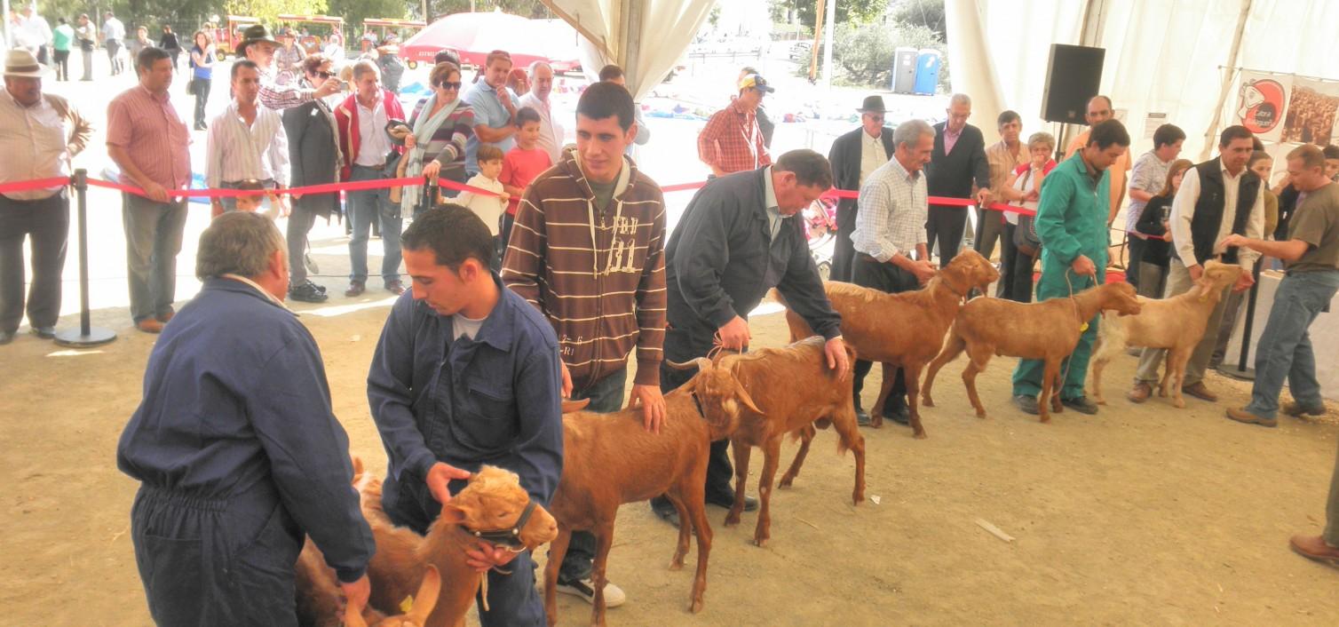 Fiesta de la Cabra malagueña