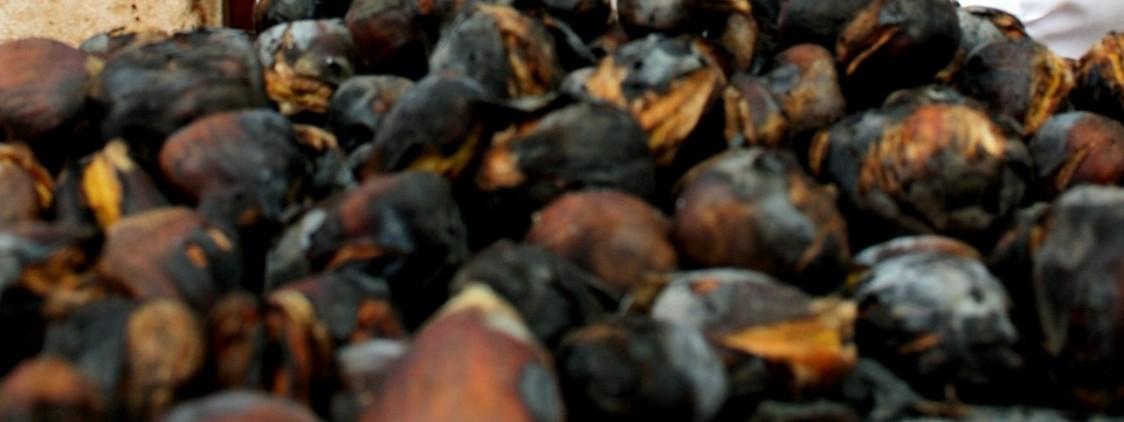 8 eventos gastronómicos con castañas