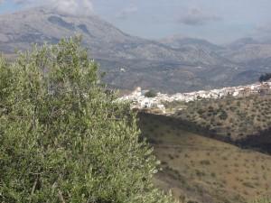 Vista del pueblo de Colmenar.
