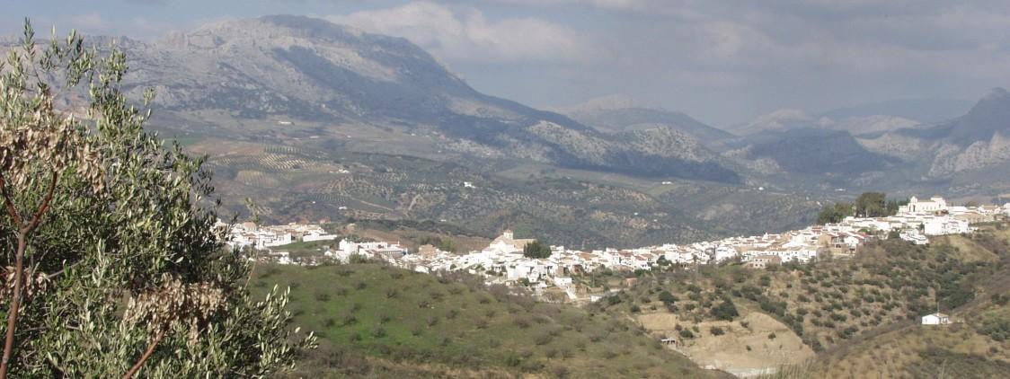 Fiesta del Mosto y la Chacina de Colmenar