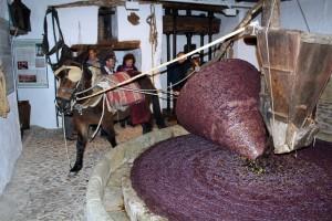 En el Museo de Riogordo se pondrá en marcha un molino de sangre del XVIII.