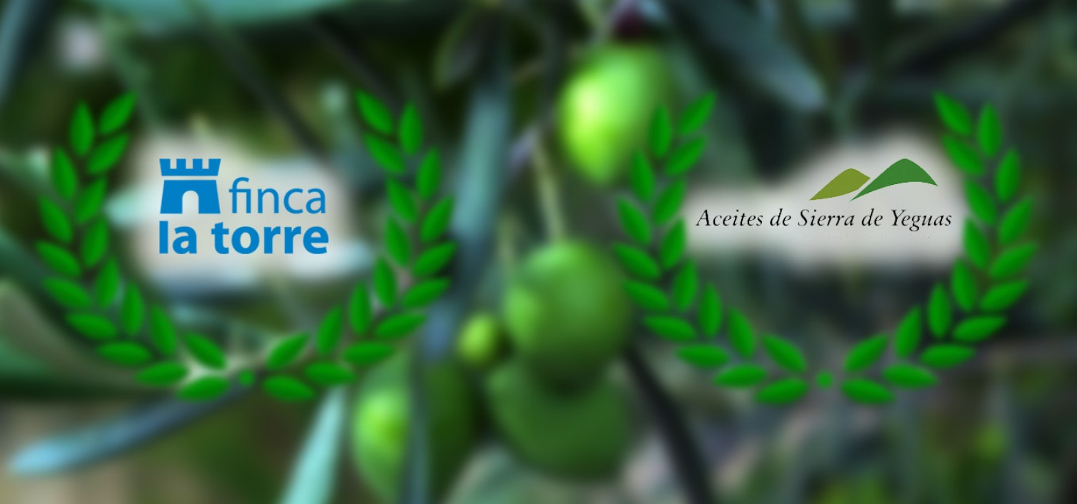 Premios aceite de oliva Diputación Málaga