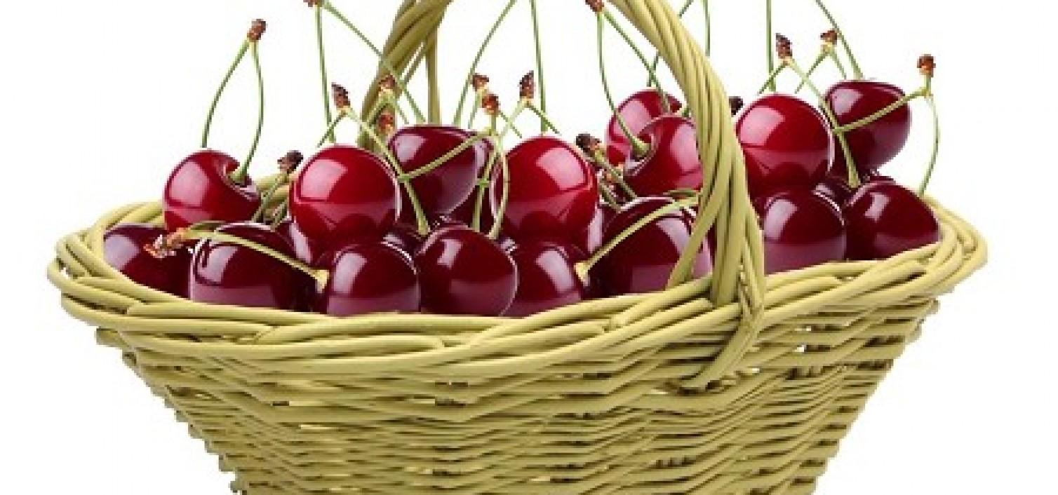 Dia de la Cereza de Alfarnate