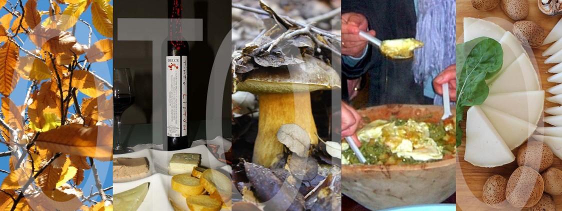 20 fiestas gastronómicas para el otoño 2015 en Málaga