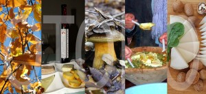 fiestas gastronómicas para el otoño 2015 en Málaga