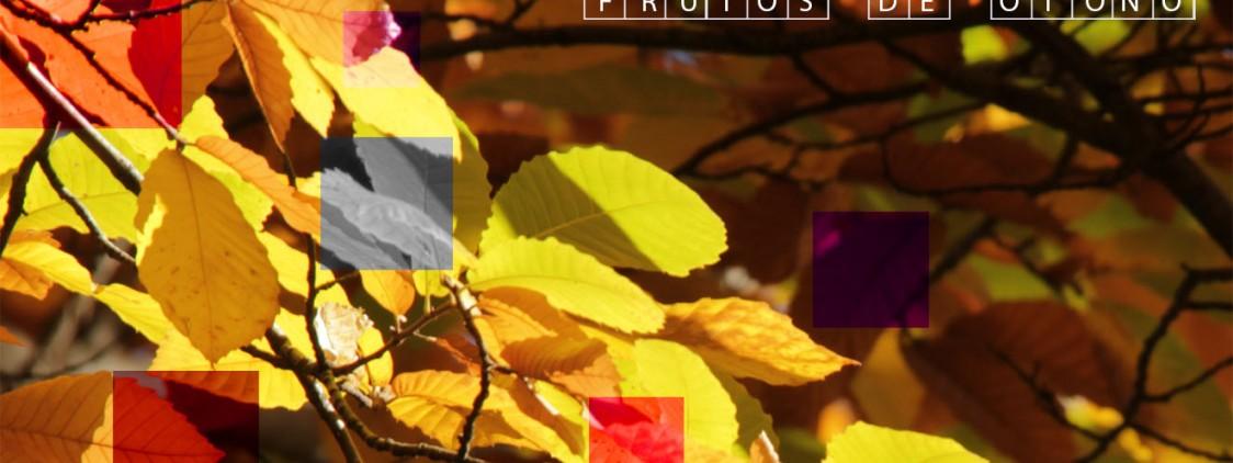 12 productos típicos del otoño en Málaga