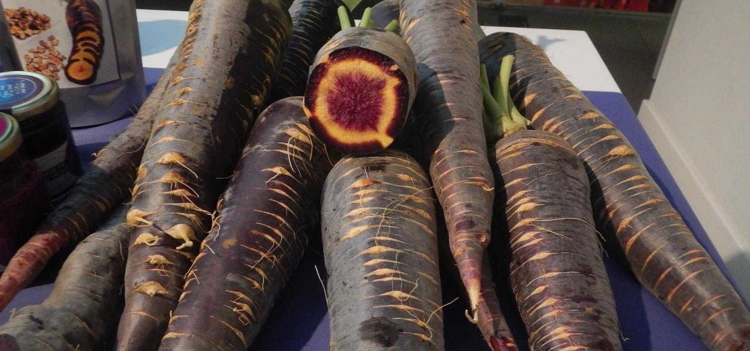 Fiesta de la Zanahoria Morá 2019