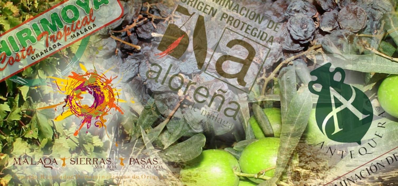 Las 7 denominaciones de Origen de Málaga