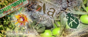 denominacions de origen de Málaga
