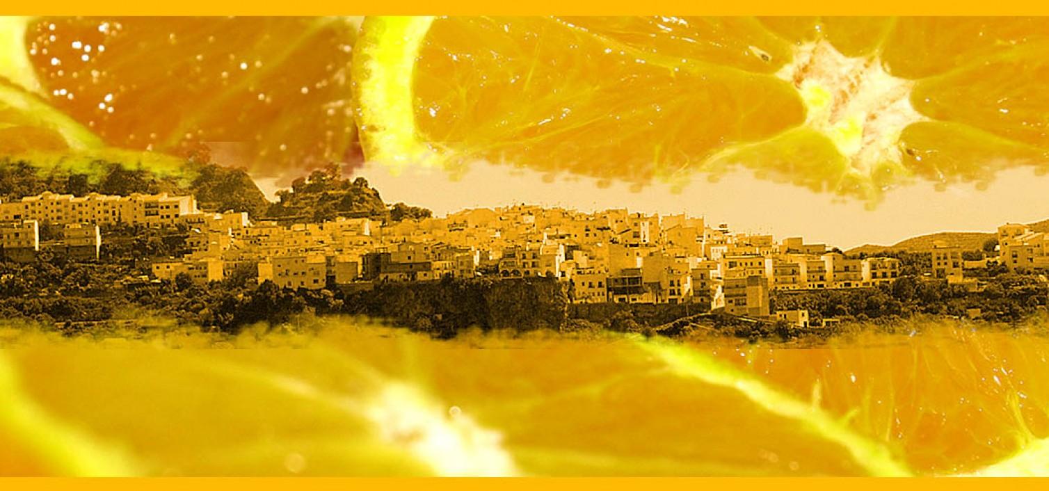 Muestra Gastonómica y Día de la Naranja de Istán 2016