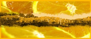 Día de la Naranja de Istán 2016