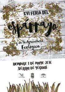 Sierra de Yeguas presume de espárragos en primavera.