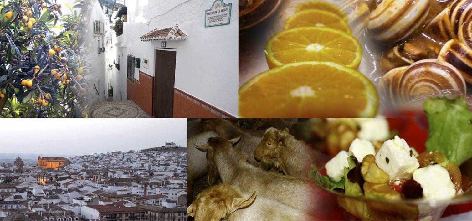 8 fiestas gastronómicas en Málaga para mayo de 2016