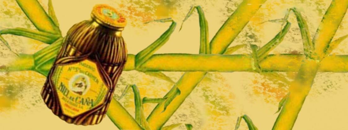 Día de la Miel de Caña en Frigiliana 2017