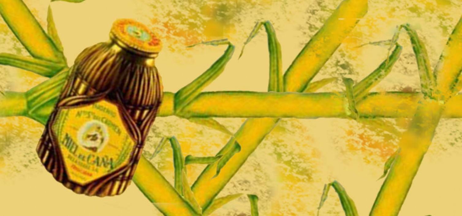 miel de caña de Frigiliana