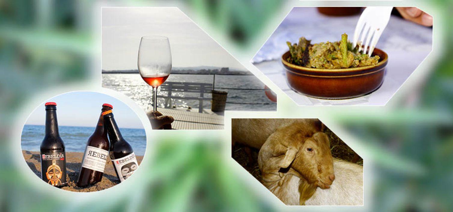 6 fiestas gastronómicas para junio en Málaga