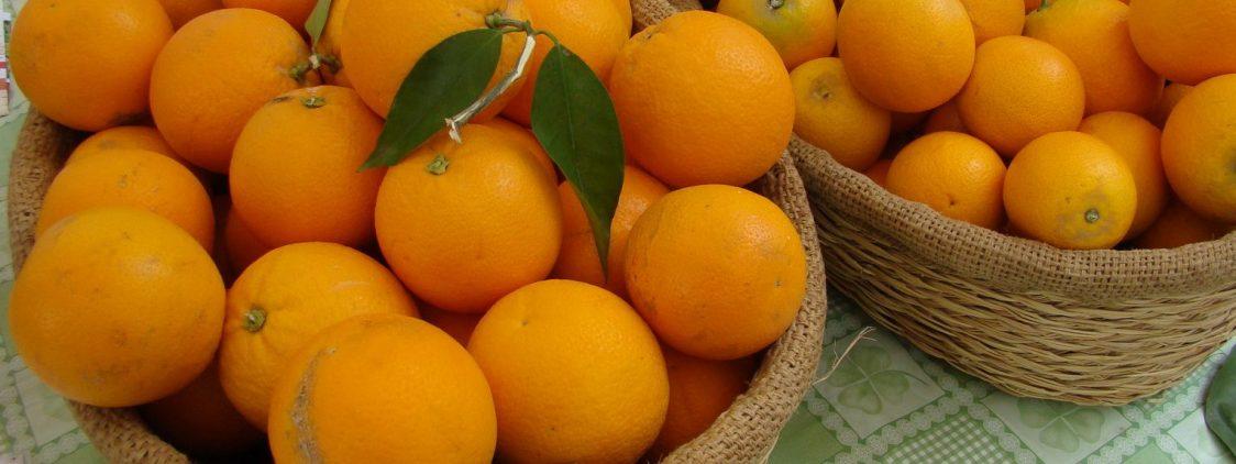 Fiesta de la Naranja de Coín 2016