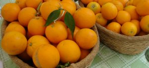 Naranjas de coín