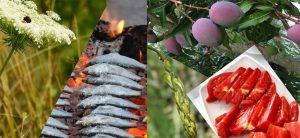 productos_temporada junio en Mälaga