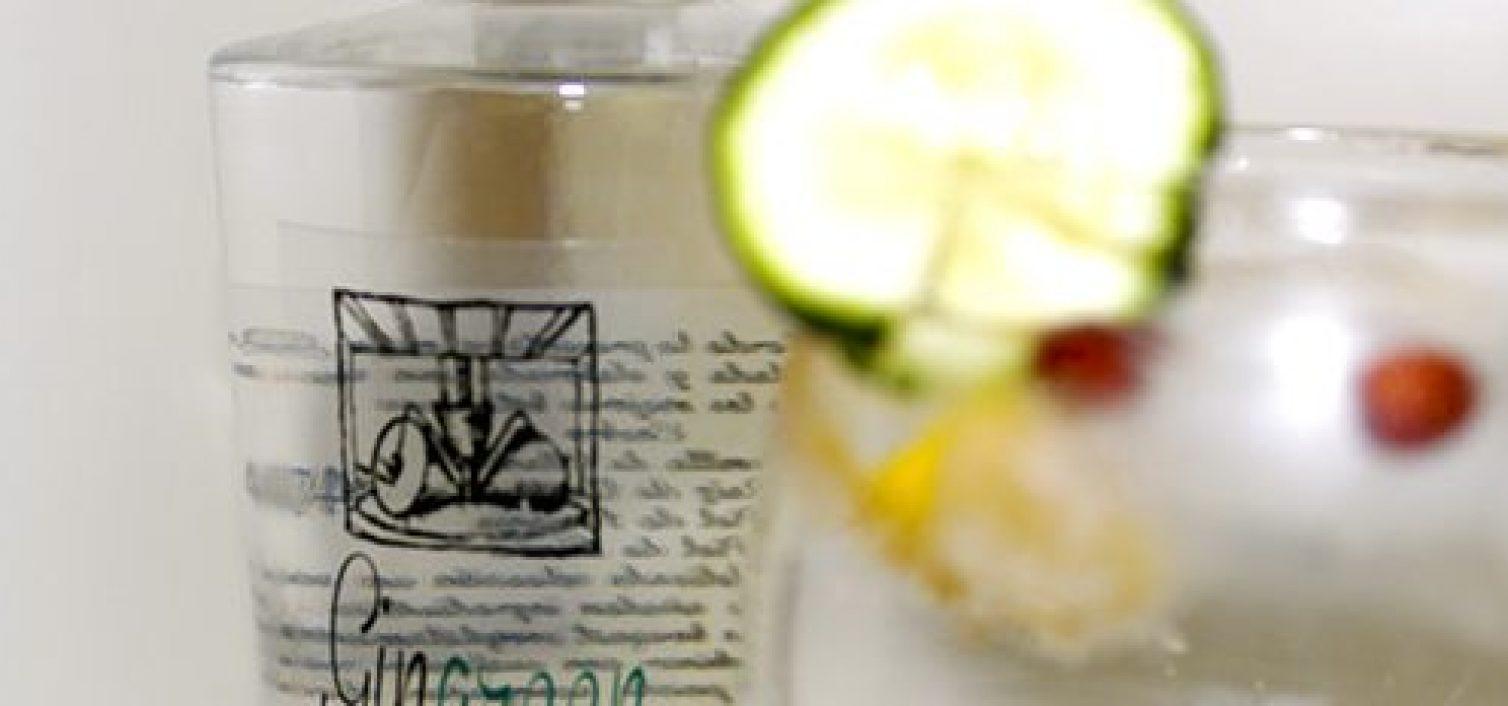 Ruta del Gin Tonic en Torre del Mar y Vélez