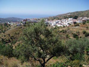 Vista de Moclinejo con el fondo del Mediterráneo.