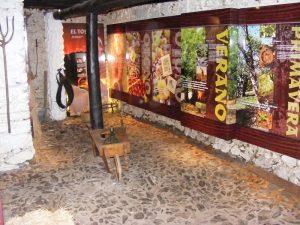 museo-de-la-castana-1