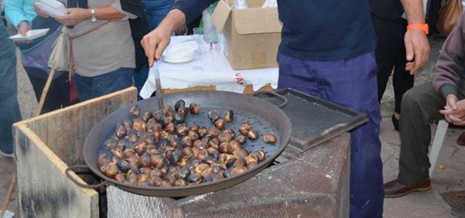 tostones-de-castanas-pujerra