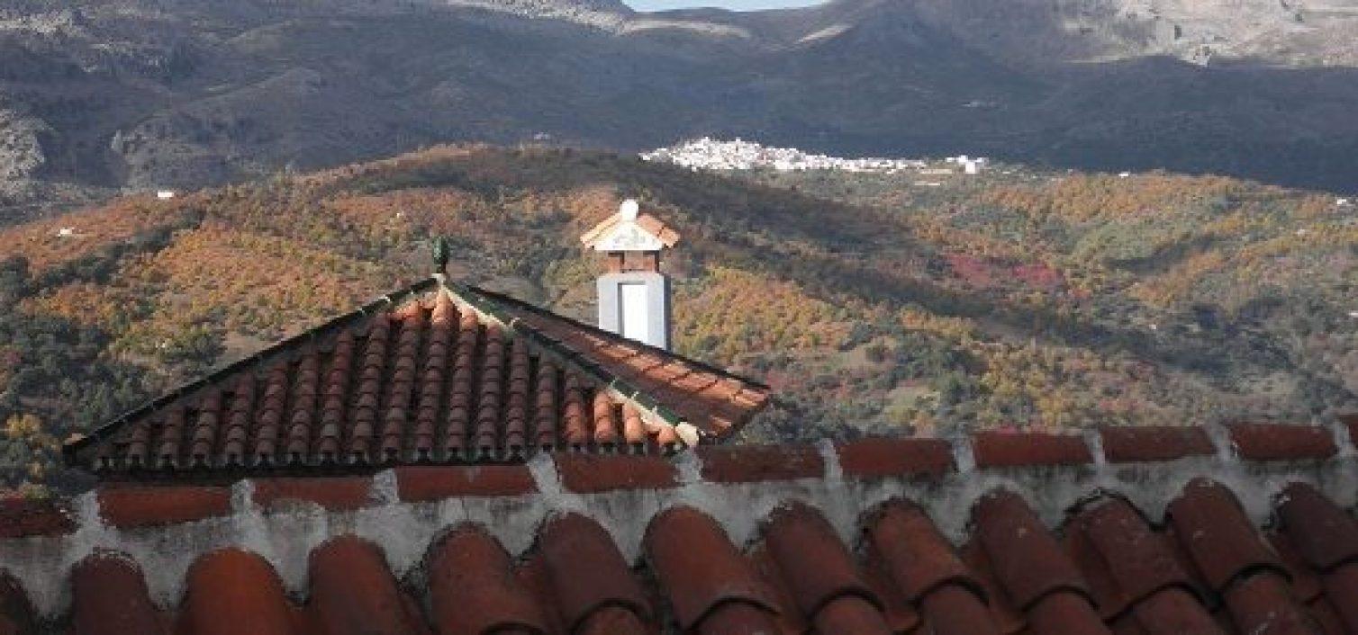 Ruta de la Castaña de la Serranía de Ronda