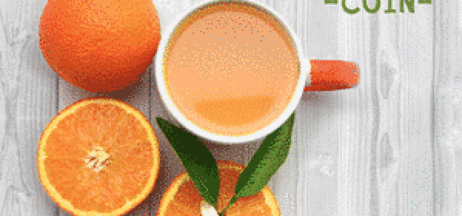 cartel fiesta de la naranja coín 2017