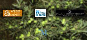 XVII Premio al mejor Aceite de Oliva Virgen Extra de la provincia de Málaga