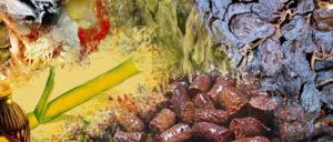 8_fiestas gastronómicas para el puente de mayo en Málaga