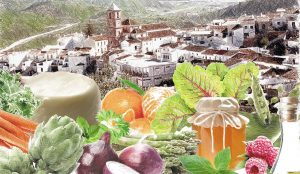 jornadas-de-cocina-popular-malagueña-de-primavera