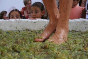 Pisa tradicional de la uva en Manilva.