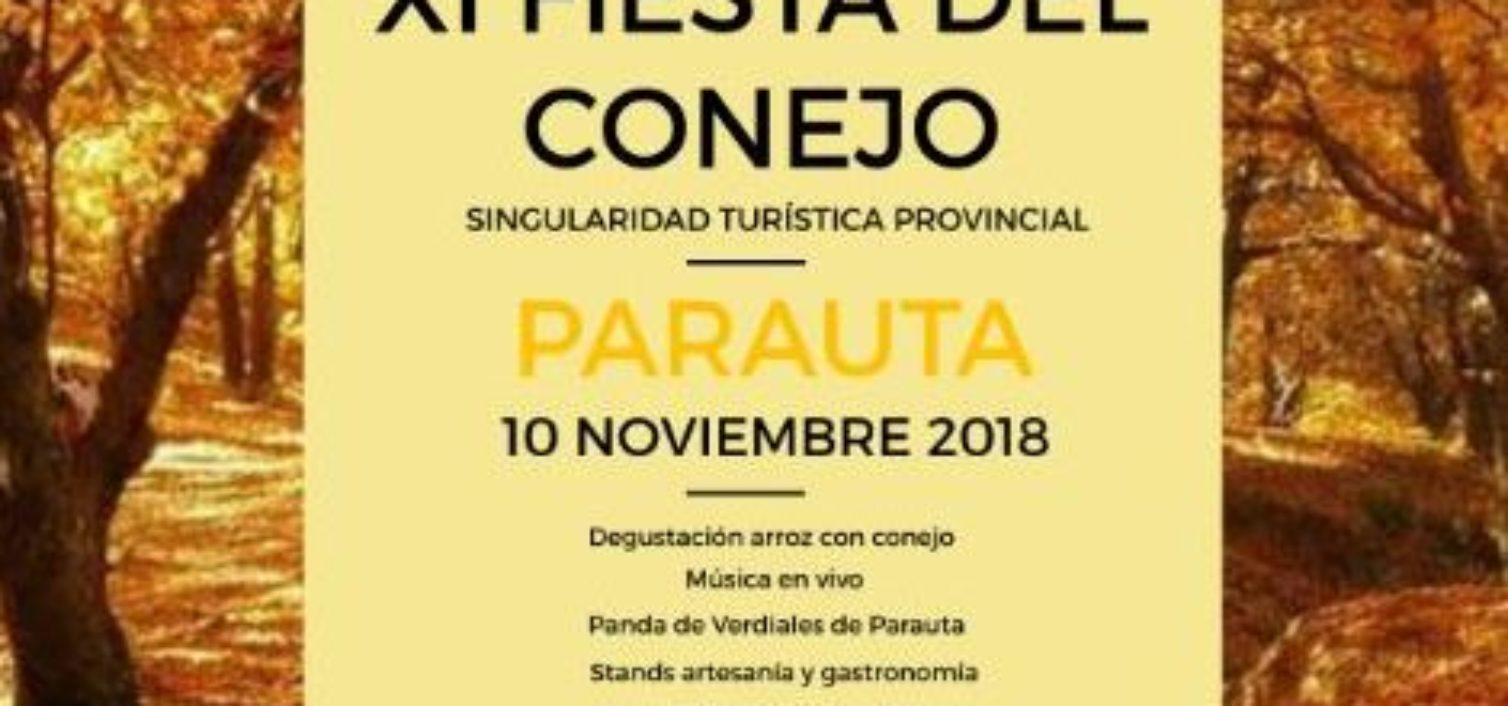 Cartel del a Fiesta del Conejo de Parauta 2018.