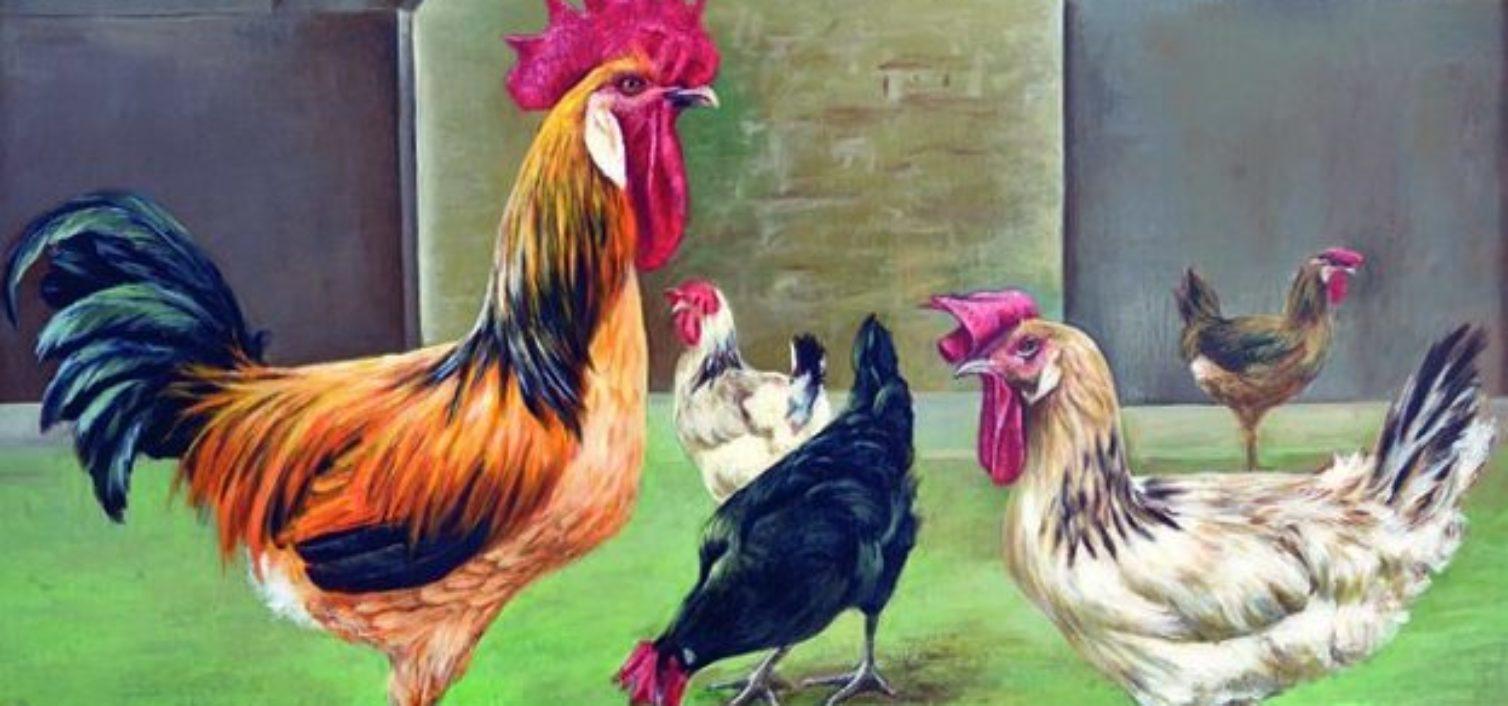 Exposición de gallinas sureñas en Álora