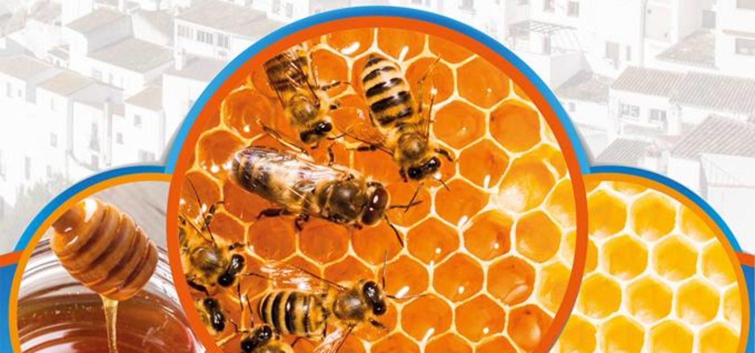Taller de elaboración de miel.