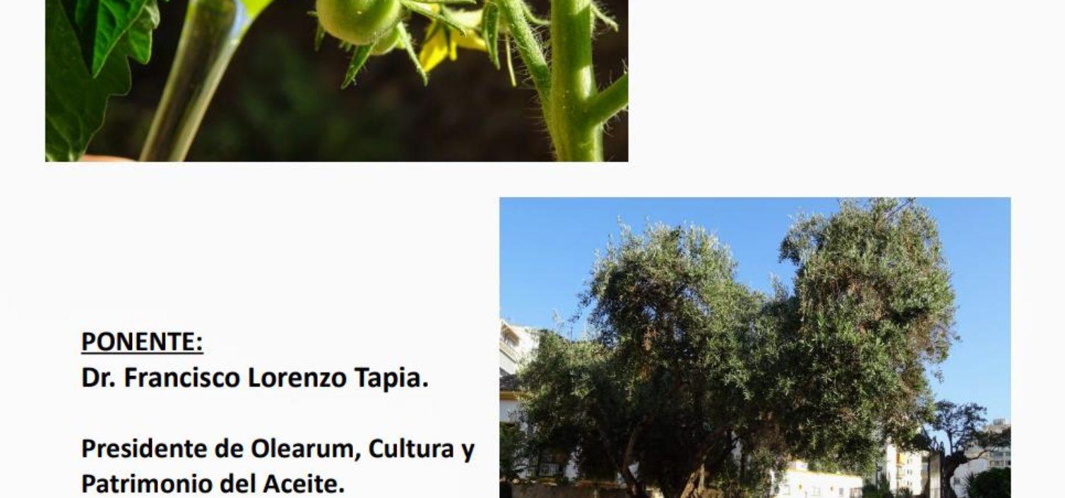 Jornada del Aceite de Oliva Virgen Extra en la Sociedad Recreativa y Cultural Casino de Marbella
