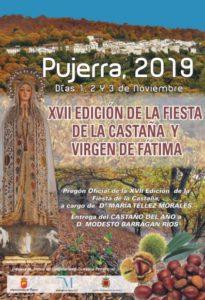 Cartel de la Fiesta de la Castaña de Pujerra 2019.