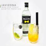 Mini Gin Tonic Bowtie Premium o cóctel Tom Collins Mango (JaviZona Café Bar Copas).