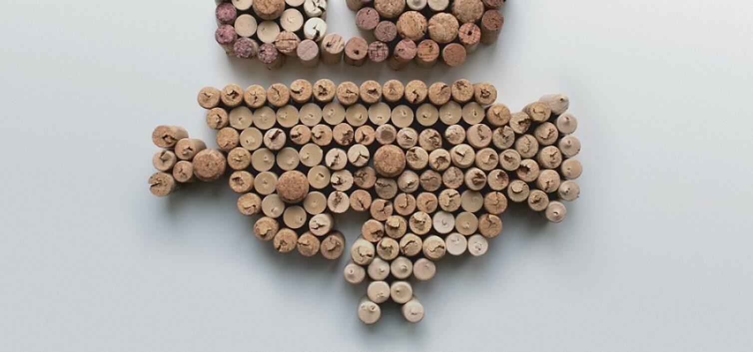 Vinomascope la primera Ruta de Vinos de Málaga